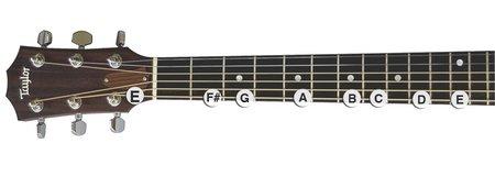 Single String E Major Scale